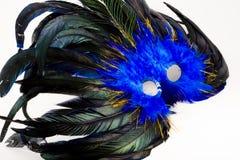 Mardi Gras Mask. Blue and black mardis gras mask details Stock Images