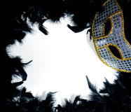 Mardi Gras Mask on Bed of Feathers Royalty Free Stock Photography