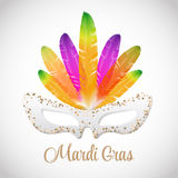 Mardi Gras  mask with colorful feathers  isolated on white Royalty Free Stock Image
