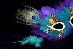 Mardi gras mask with green feather. On black