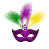 Mardi Gras mask isolated on white. Mardi Gras mask with feathers isolated on white background, stock vector graphic illustration