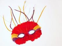 Mardi Gras masquerade mask. Feather mask