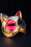 Mardi gras masques. Pair of venetian Mardi gras masques of cat on black Stock Image
