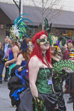 Mardi Gras Mystery Royalty Free Stock Images
