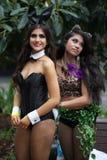 Mardi Gras Parade Sydney 2014 Imágenes de archivo libres de regalías