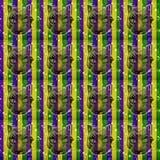 Mardi Gras Pattern Royalty Free Stock Image