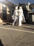 Mardi Gras Wedding royaltyfri fotografi
