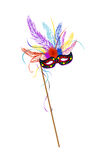 Mardi Grass mask. With colored feathers