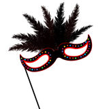 Mardi Grass mask with feathers Stock Photography