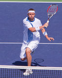 Mardy FISH at the 2009 BNP Paribas Open Royalty Free Stock Photography