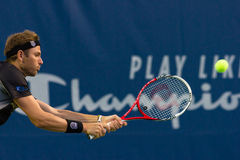 Mardy Fish Stock Images