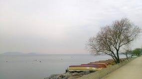 Mare & barche & mare nebbioso Fotografie Stock