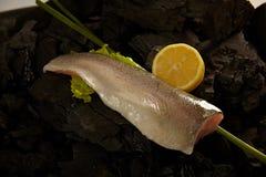 Mare Bass Fillet Fotografia Stock
