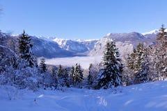 Mare behing del percorso di Snowy di nebbia in valle della montagna Fotografia Stock Libera da Diritti
