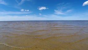 Mare bianco del litorale stock footage