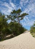 Mare bianco della spiaggia, Arcangelo, Russia Immagine Stock Libera da Diritti