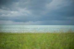 Mare blu con l'erba verde della sfuocatura su priorità alta Fotografia Stock Libera da Diritti