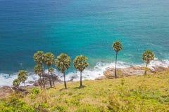 Mare blu e chiaro cielo di estate sulla collina con la palma Fotografia Stock