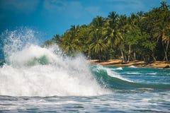 Mare caraibico immagine stock