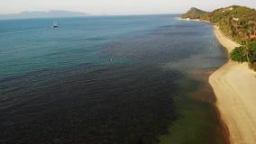 Mare con la barca a vela e le piante esotiche tropicali Da sopra la vista dell'oceano blu calmo con la nave di legno che galleggi archivi video
