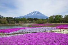 Mare dei fiori Fotografia Stock