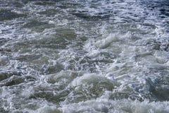 Mare del Nord di spruzzo Fotografia Stock