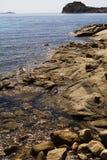 Mare del Sardina Fotografie Stock Libere da Diritti