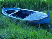 Mare dell'erba Immagini Stock