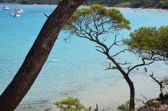 Mare dell'isola di Porquerolles in Francia Fotografie Stock