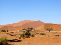 Mare della duna immagini stock