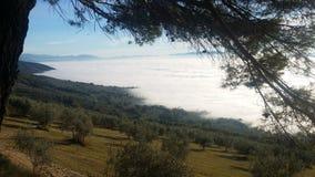 Mare della nebbia Immagini Stock