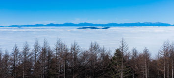 Mare della nuvola alla montagna di Fuji Fotografia Stock