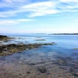 Mare della spiaggia in molti colori verdi e marroni terrosi immagini stock