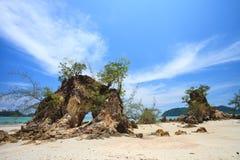 Mare delle Andamane Immagini Stock Libere da Diritti