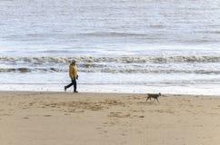 Mare di camminata della spiaggia del cane della donna Immagini Stock