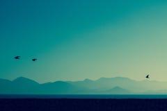 Mare di Cannes, di Cote d'Azur e montagne, Francia del sud Fotografia Stock
