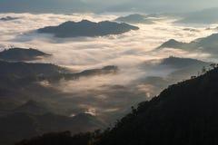 Mare di foschia sopra la foresta pluviale tropicale nella parte settentrionale di Th Immagini Stock