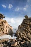 Mare di Giappone in inverno 2 Fotografie Stock Libere da Diritti