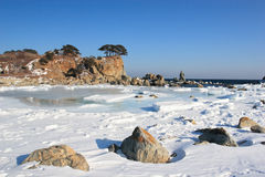 Mare di Giappone. Isola 4 fotografia stock