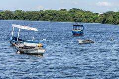 Mare di giorno soleggiato dei pescatori dei pescherecci delle barche e mare ed alberi blu del mare della montagna Immagine Stock