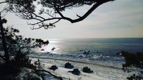 Mare di inverno immagini stock libere da diritti