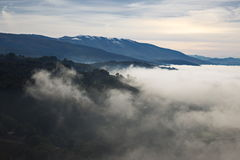 Mare di nebbia Immagini Stock