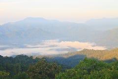 Mare di nebbia con le foreste come priorità alta Immagine Stock Libera da Diritti