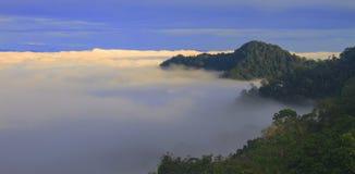 Mare di nebbia con le foreste come priorità alta Fotografie Stock Libere da Diritti