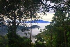 Mare di nebbia con le foreste come priorità alta Immagini Stock Libere da Diritti