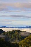Mare di nebbia con le foreste come priorità alta Fotografia Stock Libera da Diritti
