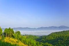 Mare di nebbia fra la valle di Namprao, Phrae, Tailandia Fotografia Stock