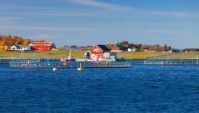 Mare di Norvegia, impresa di piscicoltura per la crescita di color salmone Fotografia Stock Libera da Diritti