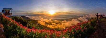 Mare di panorama di foschia sull'alta montagna Immagine Stock
