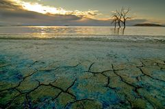Mare di Salton fotografie stock